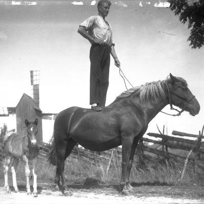 En man står på en hästrygg. Bilden är tagen 1930 i Jomala, Åland.