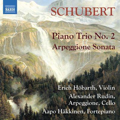 Schubert: Arpeggione Sonata / Alexander Rudin & Aapo Häkkinen