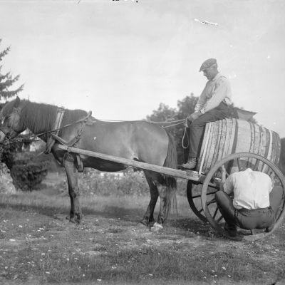 En man klamrar sig fast i ett kärrhjul som hör till en hästdragen kärra. Bilden är tagen 1930 i Sund, Tranvik, Åland.