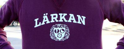 Lärkans logo på en skjorta.