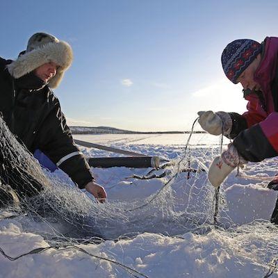 Jouko Moshnikoff ja Teijo Feodoroff talvijuomuksilla, juoŋasteapmi