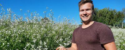 En ung jordbrukare står i en åker med oljerättika och håller en växt i handen.