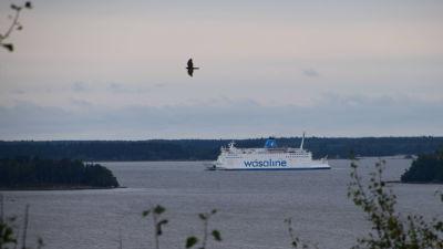 En bild tagen från toppen av storberget i gerby. Man ser havet där wasalinefärjan åker.