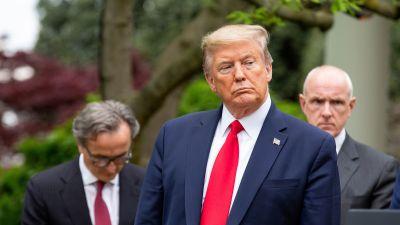 Donald Trump meddelade om beslutet art stoppa biståndet till WHO, under en presskonferens i Vita huset.