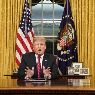 Donald Trump sitter vid ett skrivbord i Ovala rummet och talar.