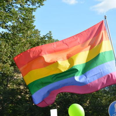 Regnbågsflagga i närbild.