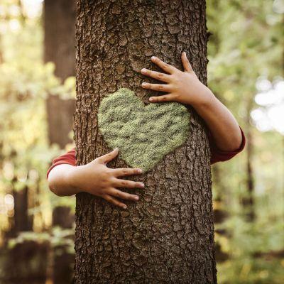 Någon kramar ett träd.