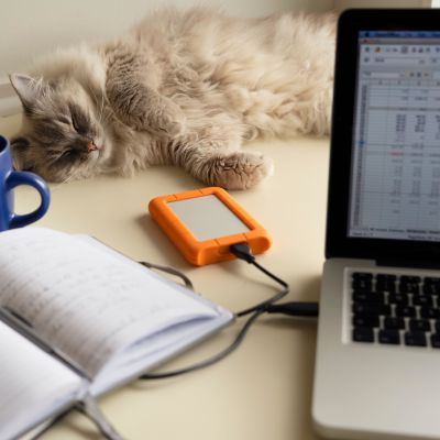 En bärbar dator på ett bord. Bredvid datorn finns en bok och en kaffekopp. Bakom datorn vilar en katt på bordet.