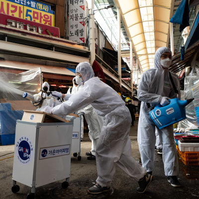 Anställda spred desinfektionsmedel i en saluhall i Sydkoreas huvudstad Seoul på onsdag morgon. 11 personer har nu avlidit och 1 146 människor smittats av viruset i Sydkorea.