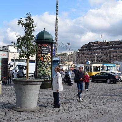 Trädet på platsen för knivattacken på Salutorget i Åbo.