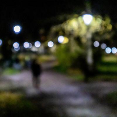 Suddig bild på gatubelysning i park.