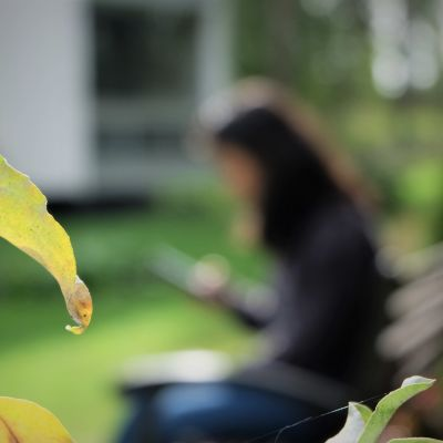 en person som sitter på en bänk och tittar på telefonen. Man kan inte se personens ansikte.