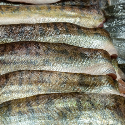 Kuhafileitä kalakaupan tiskillä.