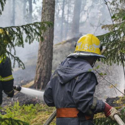 Brandmän släcker i skogen