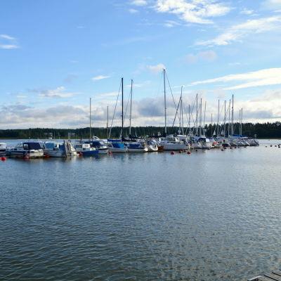 En brygga med ett tiotal båtar.
