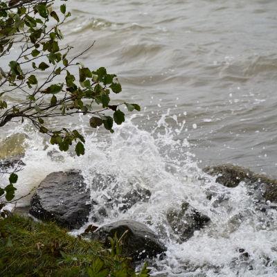 En sten i vattnet som är täckt av vpgor och skum, Vattnet strittar upp.