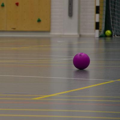 En lila boll ligger på golvet