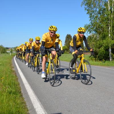 Ett gäng cyklister i gula skjortor och gula hjälmar cyklar på en landsväg i ett grönt Sommarfinland.