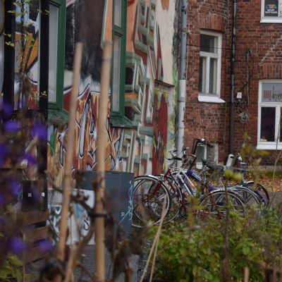 Kulttuuritalo Anniksen seinustalla olevat polkupyörät.
