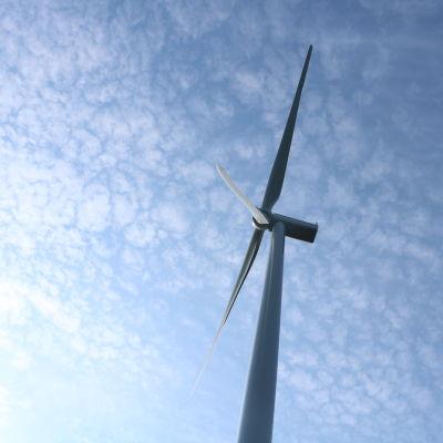Ett vindkraftverk.