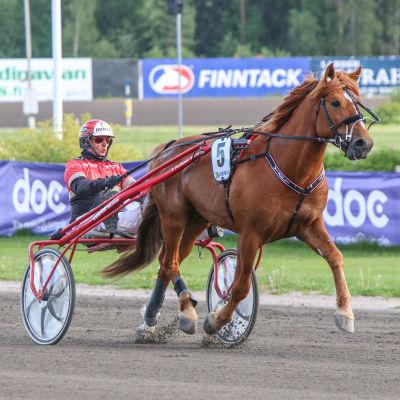 Vixeli ja Tapio Perttunen kuvassa