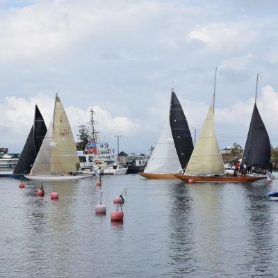 Seglingsbåtar med vita och svarta segel på väg ut ur Hangö.