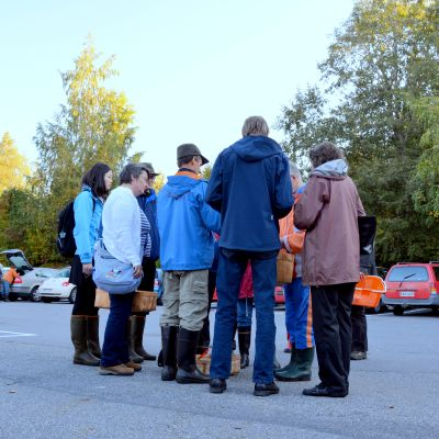 Nationella svampdagarna i Alskat i Korsholm