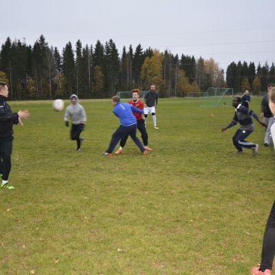 Rugbyn harjoittelutreenit Lahdessa