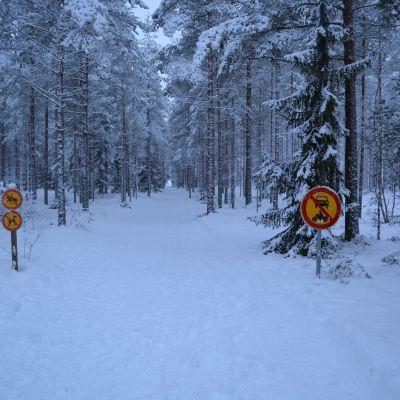 Inga hästar, hundar, bilar eller motorcyklar är tillåtna i skidspåret