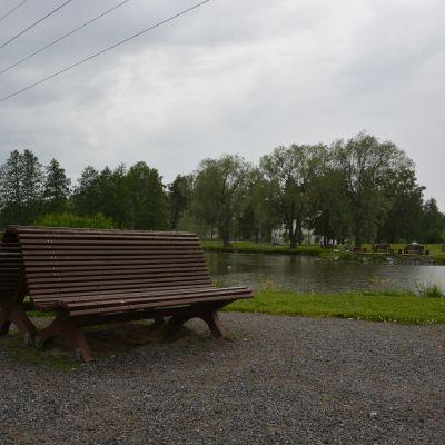Parkbänkar vid en damm i en park.