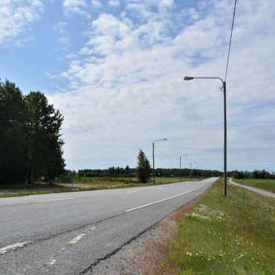 En asfaltsväg med ängar och träd vid sidorna.