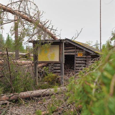 Paula-rajuilman tuhoja Puolangan Suolijärvellä kesäkuussa 2021