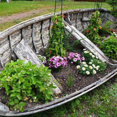 sommarblomster i roddbåt