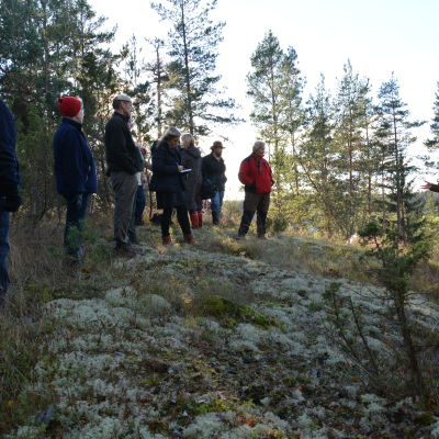 Presentation av kalkhäll på Svinberget