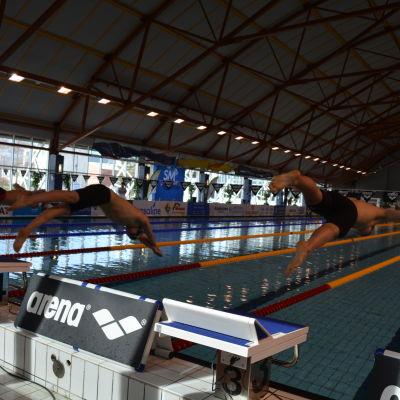 FM i simning går av stapeln i Vasa simhall.