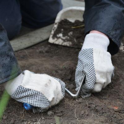 En person gräver i marken under en arkeologisk utgrävning.