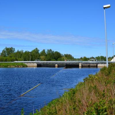 Dammen i Nykarleby