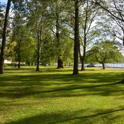 Skepparträdgården i Ekenäs.