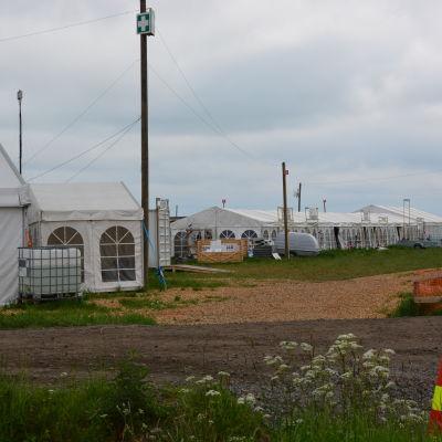 Tält uppsatta på Söderfjärden inför Suviseurat 2015.