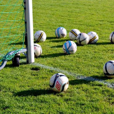 Fotbollar på gräsmatta