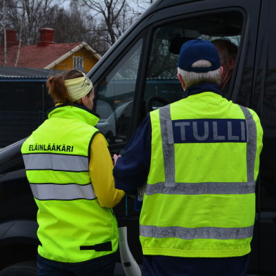 Veterinär och tulltjänsteman kontrollerar hundägare i Åbo hamn.