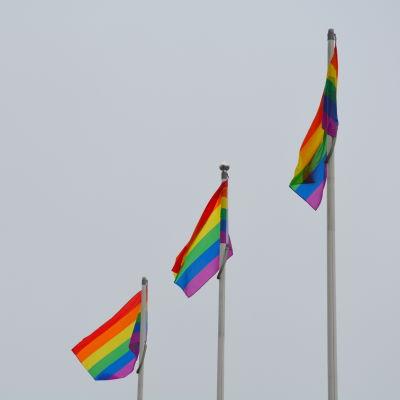 Regnbågsflaggor i Åbo