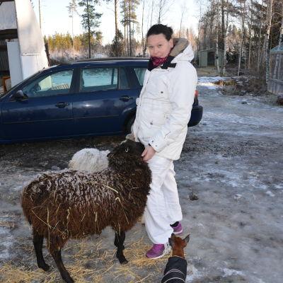 Jenni Wasberg tillsammans med fåren Bubben och Lulu och hunden Chevelle