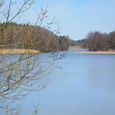 Sötvattenbassägen på Ålön i Pargas.