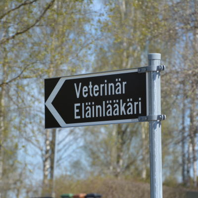 Gatuskylt där det står veterinär, eläinlääkäri.