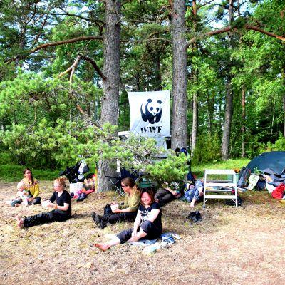 WWF:s talkoläger på Furuvik naturskyddsområde i Hangö.