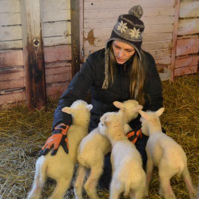 susanne björkell och fyra lamm