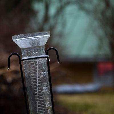 Gammal, våt, lutande regnmätare i trädgård.