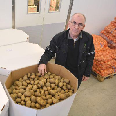vd hasse nyqvist vid borgå potatis