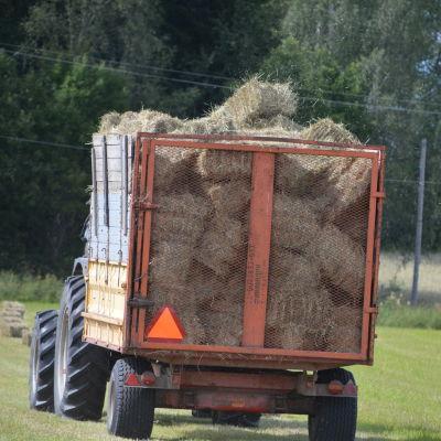 Christian Jensens traktor kastar höbalar